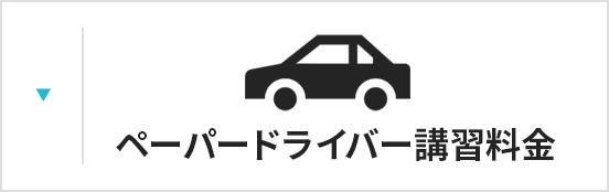 ペーパードライバー講習料金